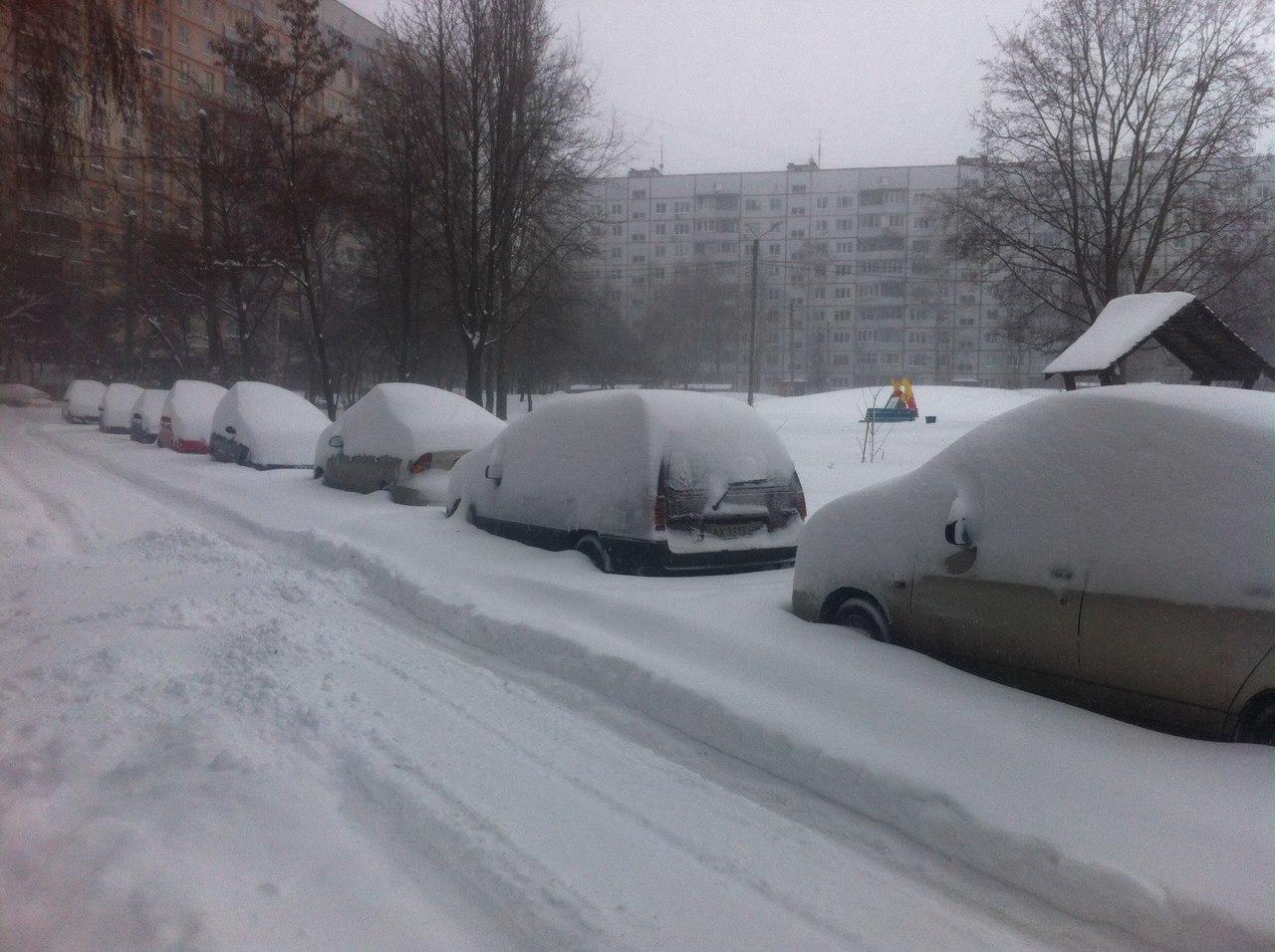 снег  (3)