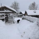Лесной поселок оказался в снежном плену