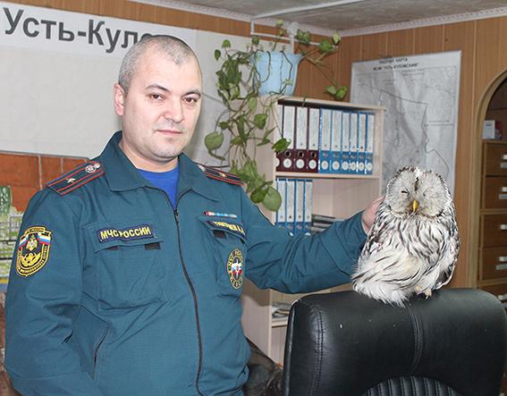 Тимушев с совой