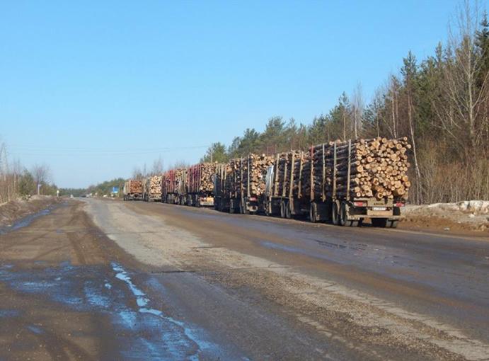 лесовозы встали