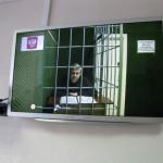 Интинцев записывают на прием к арестованному