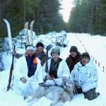 В Усть-Вымском районе убили  волчицу,  которая несколько месяцев обводила  всех вокруг  когтя
