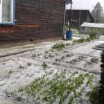 Град уничтожил огороды в лесном поселке