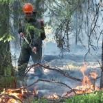 Ижма в огне (Блиц от 22 июля)