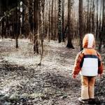В Усть-Куломском районе на этой неделе в лесу искали трехлетнюю девочку