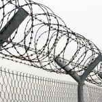 Заключенных мучают, бьют и насилуют
