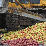 В Ухте тоннами уничтожают продукты