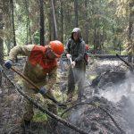 В Коми горят леса (Блиц от 21 июля)