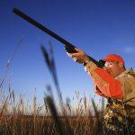 С ружьями и собаками на беззащитных птенцов
