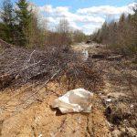 Лесозаготовителям пригрозили закрыть дороги на Усть-Кулом и Объячево