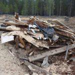 Виновных за «экологическую диверсию» до сих пор не нашли