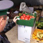 Запретные плоды (Блиц от 3 ноября)