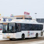 Водители автобусов получают «серую» зарплату